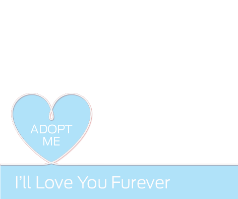 DIY Love You Furever