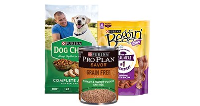 All Dog Food